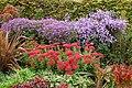 Floral display in Avenue Gardens, Regents Park - geograph.org.uk - 1524016.jpg