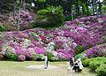 Flower garden of Daikouzenji 01.JPG