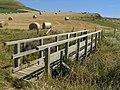Footbridge on the coast path south of Swyre Head - geograph.org.uk - 901050.jpg