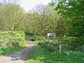 Footpath - Warley Gap - geograph.org.uk - 164017.jpg