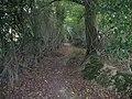 Footpath behind houses on Hayes Lane - geograph.org.uk - 1492573.jpg