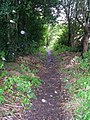 Footpath in the Rain^ - Hawksworth Lane, Guiseley - geograph.org.uk - 996925.jpg