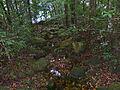 Forest Brook (15497890928).jpg