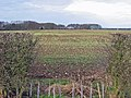 Foxcovert Farm - geograph.org.uk - 110708.jpg