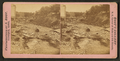 Freshet in 1876, Dubuque, Iowa, by Root, Samuel, 1819-1889.png