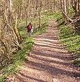 Fußweg zur Leinleiterquelle - panoramio.jpg