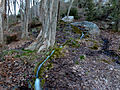 Fuente arriba en Benizar.jpg
