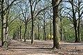 Gödöllő, Erzsébet park, 3.jpg