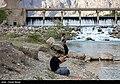 Gamasiab River 2020-04-29 09.jpg