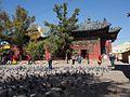 Gandan Monastery (11441166104).jpg