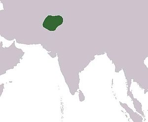 Gandhara - Approximate boundaries of the Gandhara Kingdom, in northwest Pakistan and northeast Afghanistan.