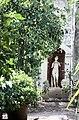 Garda, San Vigilio, lemon tree and statue.jpg