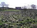 Garvaghy Townland - geograph.org.uk - 1225029.jpg