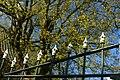 Gele kornoelje te Zwalm - 372609 - onroerenderfgoed.jpg