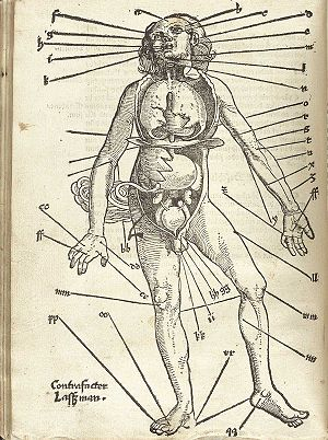 Bloodletting - Points for blood-letting, Hans von Gersdorff (surgeon), Field book of wound medicine, 1517