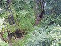 Geschützter Landschaftsteil GLOCKE in Finkenberg 01.JPG