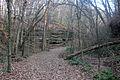 Gfp-wisconsin-mirror-lake-state-park-creek-trail.jpg