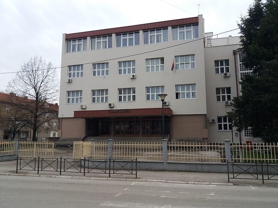 Gimnazija Leskovac 01