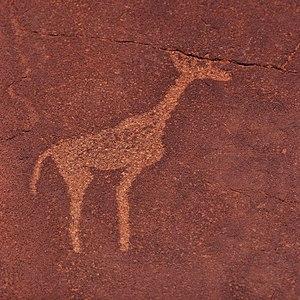 Twyfelfontein - Rock engraving of a giraffe