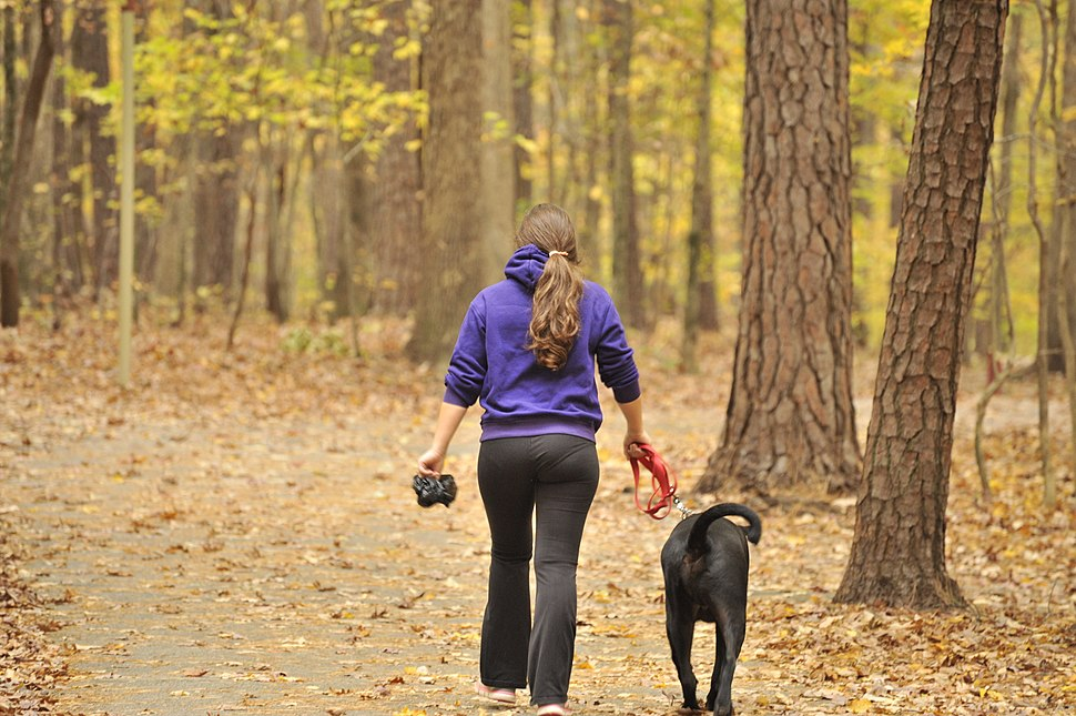 Girl walking dog at Lake Johnson