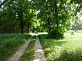 Glasower Weg - panoramio.jpg