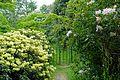 Glendurgan Garden - Cornwall, England - DSC01769.jpg