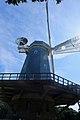 Golden Gate Park - Murphy Windmill - March 2018 (1650).jpg