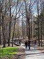 Golden Square Mile, Montreal, QC, Canada - panoramio (19).jpg