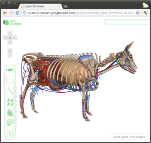 ZygoteBody - Image: Google Cow open 3d viewer