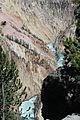 Grand Canyon of the Yellowstone 21.JPG