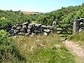 Granite wall and gateposts, near Postbridge - geograph.org.uk - 126794.jpg