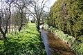 Grassthorpe Beck - geograph.org.uk - 388156.jpg