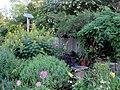 Green Spring Gardens in August (14917558101).jpg
