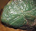 Green nephrite jade ventifact (Precambrian; Crooks Mountain, Fremont County, Wyoming, USA) 7 (24651308445).jpg