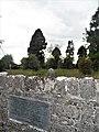Grey Abbey, Kildare.jpg