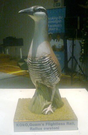 Guam rail - Ceremonial statue of a Guam rail (Ko'ko), presented as a gift by the Government of Guam.