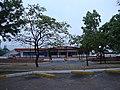 Guaparo, Valencia 2001, Carabobo, Venezuela - panoramio.jpg