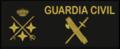 Guarcivi19.png