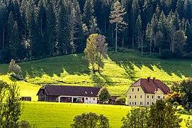 Gurk Reichenhaus 16 Anwesen 30092020 8090.jpg