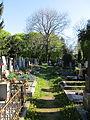 Hřbitov Krč 11.jpg