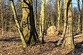 Haltern am See, Naturpark Hohe Mark -- 2018 -- 1307.jpg