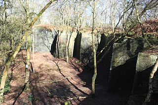 Harmers Wood