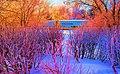Harmonie en hiver - panoramio.jpg