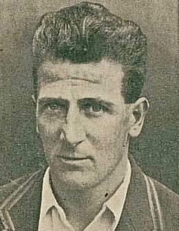 Harold Larwood Cigarette Card Crop.jpg