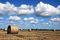 Hay and clouds (3882316970).jpg