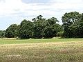 Hay field adjoining farm track - geograph.org.uk - 1411344.jpg