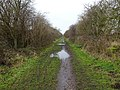 Hedon Racecourse railway Halt (site), Yorkshire (geograph 5658663).jpg