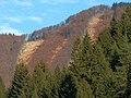 Hepnár v jeseni - panoramio.jpg