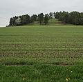 Herbstadt-0476.jpg