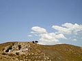 Hill in Ephesus.jpg